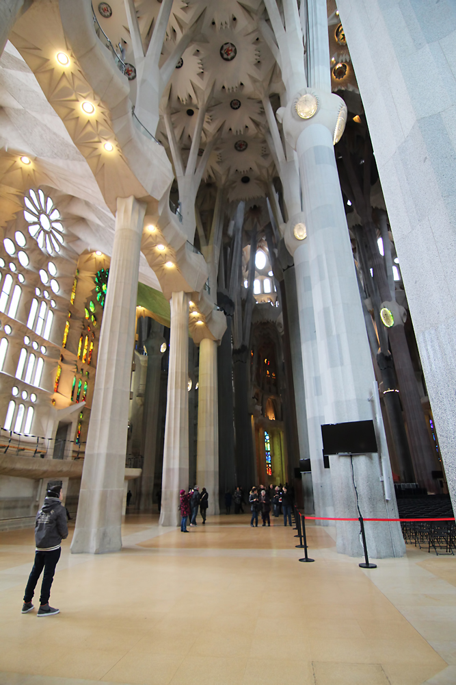 The interior of the Sagrada Familia. The design is Inspired by nature, as the pillar and branches symbolise trees rising up to the roof.