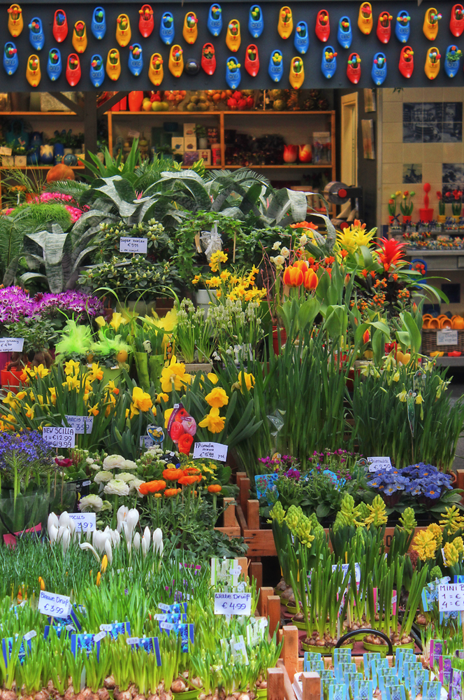 Colorful spring flowers at the Bloemenmarkt. Image Credit: Travel Photographers Magazine