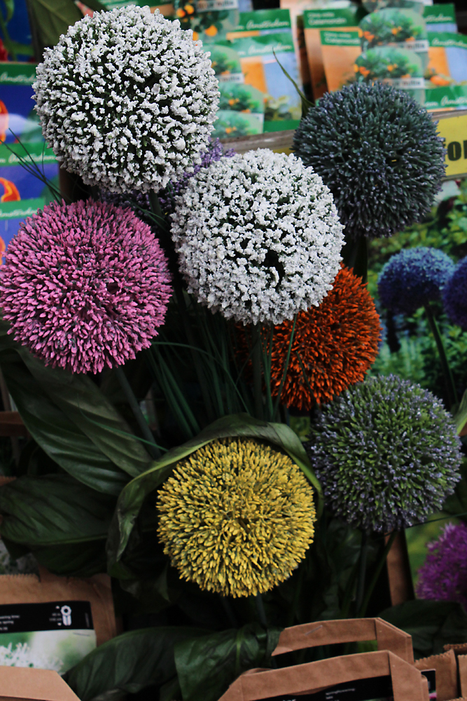 The flower displays can yield surprising colors and textures. Image Credit: Travel Photographers Magazine